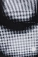 200x300cm Acrylic on Canvas